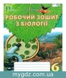 ГДЗ Котик 6 клас