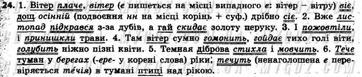 ГДЗ номер 24 до підручника з української мови Глазова 6 клас