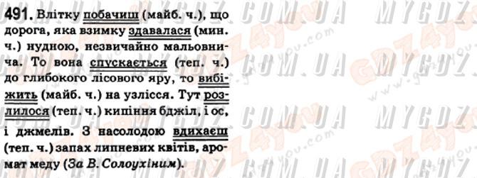ГДЗ номер 491 до підручника з української мови Ворон, Солопенко 6 клас