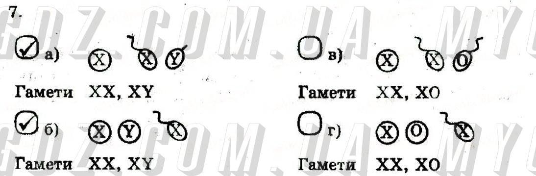 ГДЗ номер 7 2014 Котик, Тагліна 11 клас